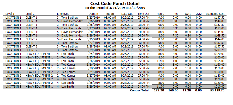 Cost Code Punch Detail